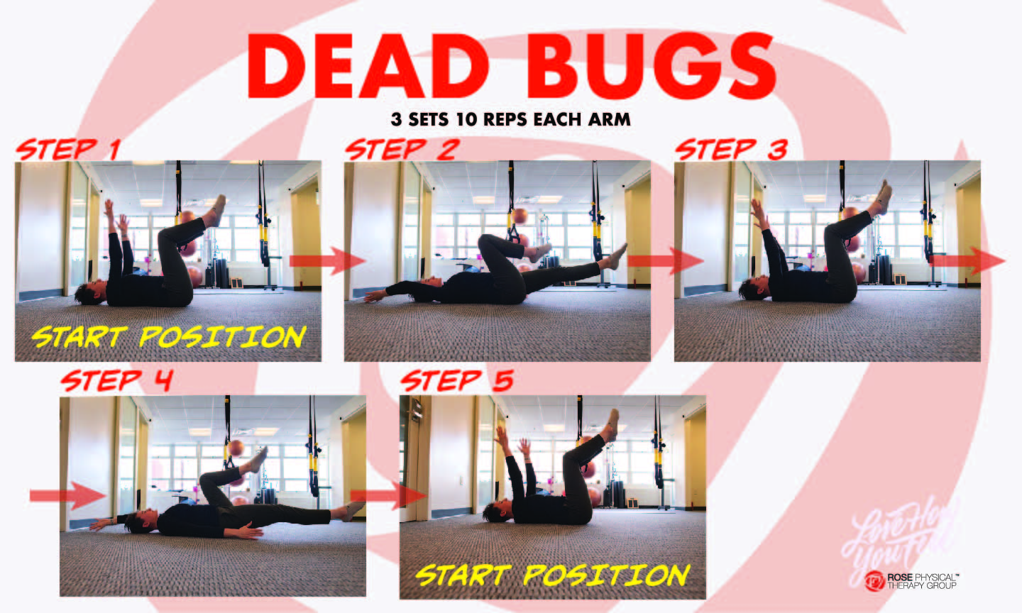 physical therapy dead bug exercise washington dc