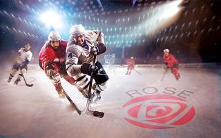 dramatic rose physical therapy hockey washington dc
