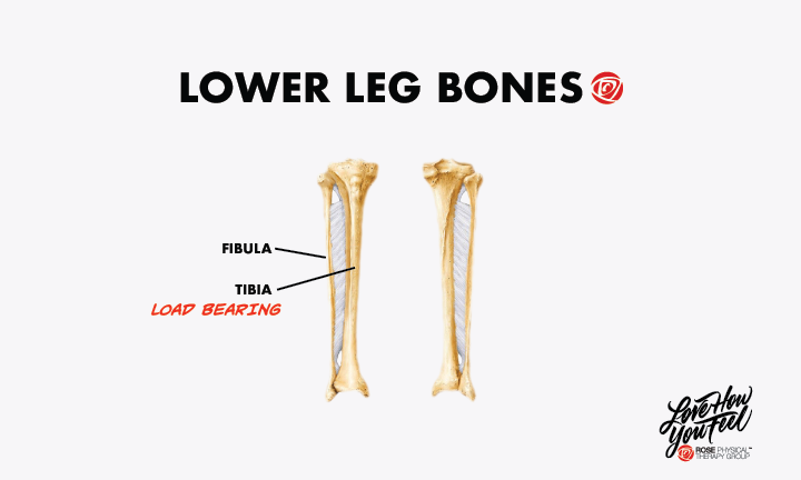 physical therapy for fibula tibia broken bone washington dc
